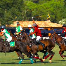 Polo Club de Saint-Tropez - Haras de Gassin