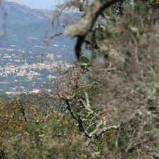 Vue sur le village de Grimaud